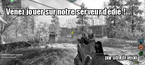 Un serveur Call of Duty : Black Ops sur ZeDen !