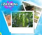 img.zeden.net