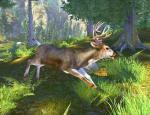 hunterstrophy2_008.jpg