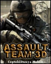 Boîte de Assault Team 3D
